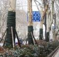 供青海包树裹树条和西宁包树条哪家好