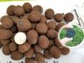 周口陶粒建筑陶粒黏土陶粒謝謝你的認可