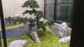 廣東大量雪浪石景觀石切片組合泰山石假山石庭室內新中