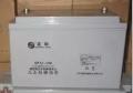 UPS蓄电池SP12-65铅酸蓄电池圣阳12V65
