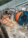 河北曲阳废电缆回收 河北曲阳旧废电缆回收