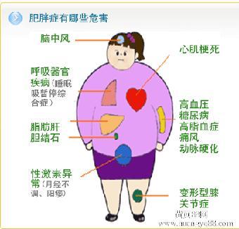 减肥拔罐的位置图图解