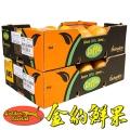 进口水果批发色列红心西柚奶茶店茶饮店供货商