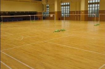 信阳 固始 南阳健身房 舞蹈房专用PVC塑胶地板