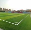十一人制足球場人造草生產經驗豐富