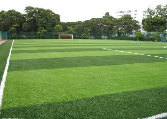 成都足球场施工流程