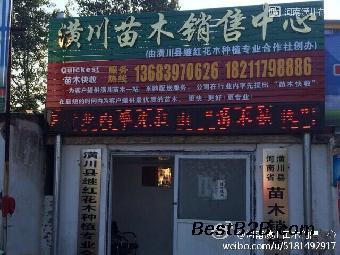 潢川彭店乡镇地图