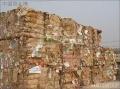 上海物资销毁中心杨浦区物资销毁最高赔率公司废纸粉碎销毁处理
