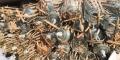 高價收懸式絕緣子回收復合絕緣子回收陶瓷絕緣子