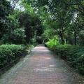 深圳市民郊游新去處
