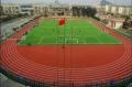 浙江新國標塑膠跑道材料廠家 學校全塑型塑膠跑道造價