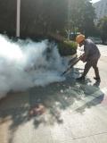 东莞白蚁防治公司 杀虫灭鼠 专业提供虫控验厂证件
