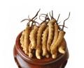 順德回收冬蟲夏草價位-大量回收閑置冬蟲夏草