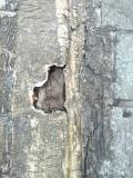 上海彩钢瓦锈蚀锈穿防水补漏 厂房屋面