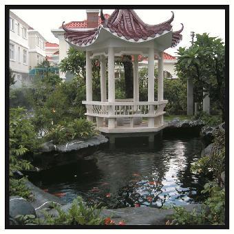 工艺别墅庭院锦鲤鱼池设计建造