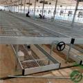 大棚专用移动苗床养花育苗使用