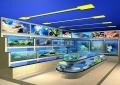 广州最便宜的海鲜鱼池,广州质量好的海鲜鱼池