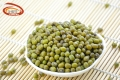 廣東金威瑪甜品材料大粒精選綠豆加工定制