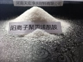 南京1200萬聚丙烯酰胺天宏味精廠污泥脫水