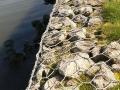 江西石笼网厂(沃安网业)全年直销品种齐全的石笼网