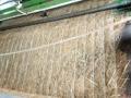 土工网椰丝稻草混合草毯 草籽绿化毯 公路护坡