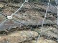 山坡防护网价格