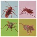 上海专业灭白蚁公司 上海饭店除白蚁 上海杀虫灭跳蚤公司报价