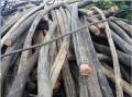 滨州(就是今日)分支电缆回收价格已更新