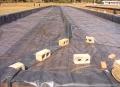 欢迎光临-衡阳氧化塘防渗膜厂家