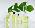 广州雅丝丽生物科技有限公司,预计今年生物提取技术将