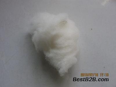 现货绵羊绒原料 白色脱脂免费拿样