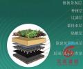 供应河南洛阳蓄排水板