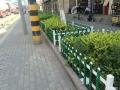 信鹏草坪护栏花园围栏路边小区护栏绿化带护栏直销