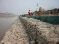 河道治理 网