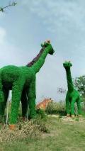 大型植物绿雕花坛生产厂家价格
