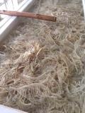 火锅食材哪家好大众良品鲜毛肚质量很好