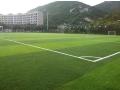 人工足球场安装