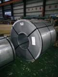 冷轧板卷DC01低碳钢板钢带DC01规格厚度