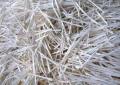 上海高价废纸回收销毁 上海大批量文件资料销毁处理