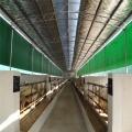 养殖场卷帘布加工 温室养殖卷帘布定做 卷帘布批发