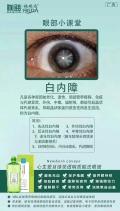 预防飞蚊症 、老年人该怎样预防白内障 、青光眼、