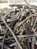 烟台电缆回收公司烟台电缆回收烟台废电缆回收