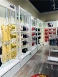 内衣加盟店,广州狄朵娜内衣有限公司简单盈利