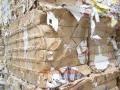 浦东区废纸回收行情-浦东区废纸回收价格走向