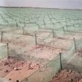 青海防沙治沙措施,中卫高立式防沙网,防沙阻沙网价格
