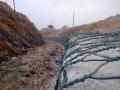 绿滨垫生产厂家A镀10锌铝合金绿滨石笼网