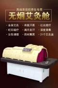 养生理疗舱生产厂家 韩国养生理疗舱多少钱一台