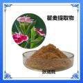 瞿麦皂苷 多糖 石竹流浸膏 山瞿麦黄酮香草生物