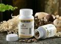 春芝堂真菌多宜金盈泽猴头菇食用菌为您健康服务