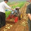 大蒜收获机视频 农用多功能起蒜机 宽幅土豆收获机